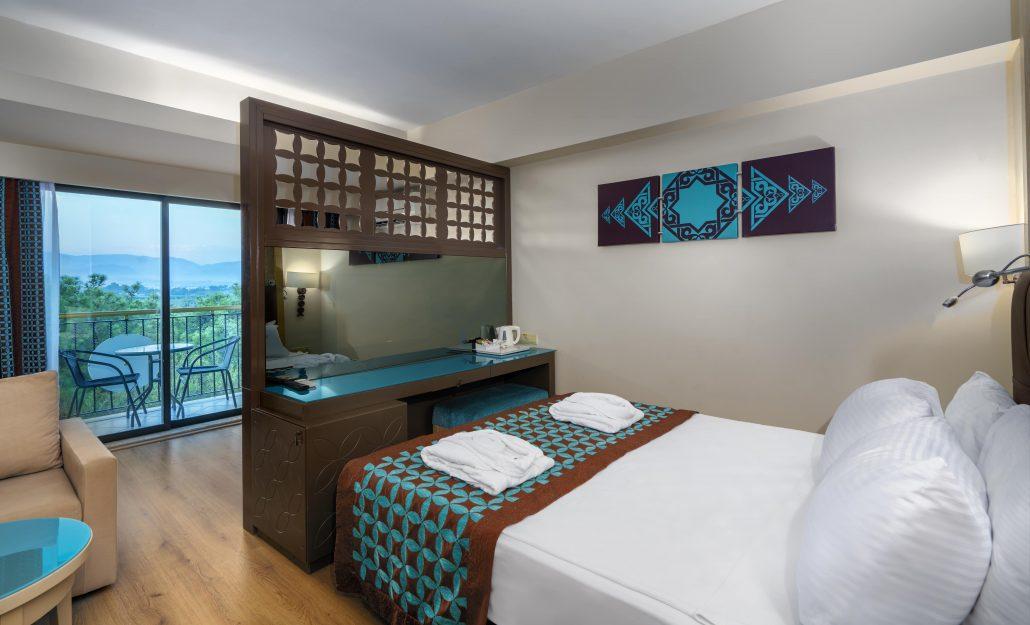 Standard Panoramic Room