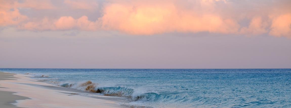Stunning Shores